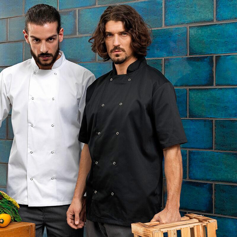 chefs jackets short sleeve